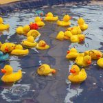 Hoopla Ducks - Planet Fun